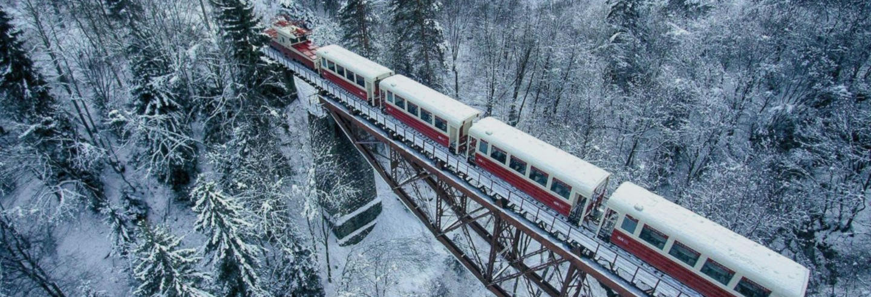 Excursión a Borjomi + Bakuriani en el tren Kukushka