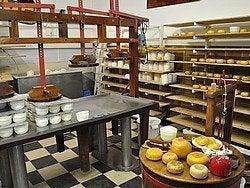 Granja de queso cerca de Volendam