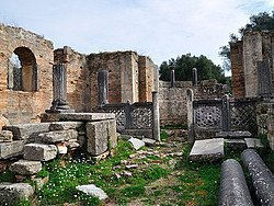 Recorriendo la Antigua Olimpia