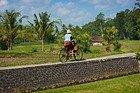 En bici por los arrozales