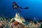 Buceando en las Islas Gili