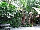 Jim Thompson House: Jardín