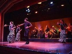 Disfrutando del espectáculo de flamenco