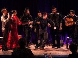 Flamenco en Casa Camarón