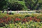 Parque Tres de Febrero, rosaleda