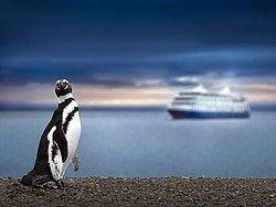 Crucero llegando a la Patagonia