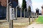 Auschwitz, alambradas
