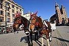 Coches de caballos en la Plaza del Mercado