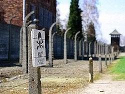 Auschwitz, attenzione!