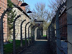 Auschwitz, alambrada y torre de vigilancia
