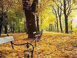 Cracovia en otoño