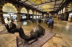Dubai Mall, zoco del oro