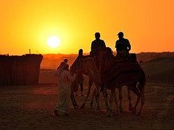 Paseando en camello al atardecer