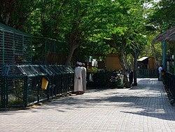 Zoo de Dubái