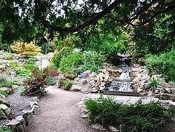 Jardin Botanico de Dublin