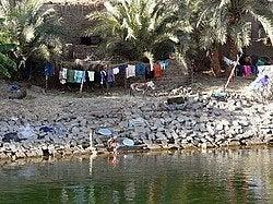 Vida en el Nilo