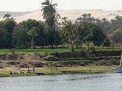 Habitantes Nilo