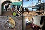 Excursión a Sefrou, Bhalil, Ifrane y Azrou