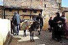 Parking de burros en el puente del Río Fez