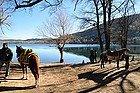 Uno de los lagos del Parque Natural de Ifrane
