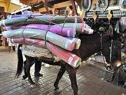 Burro transportando alfombras
