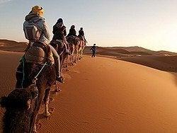 Desierto de Merzouga, camellos