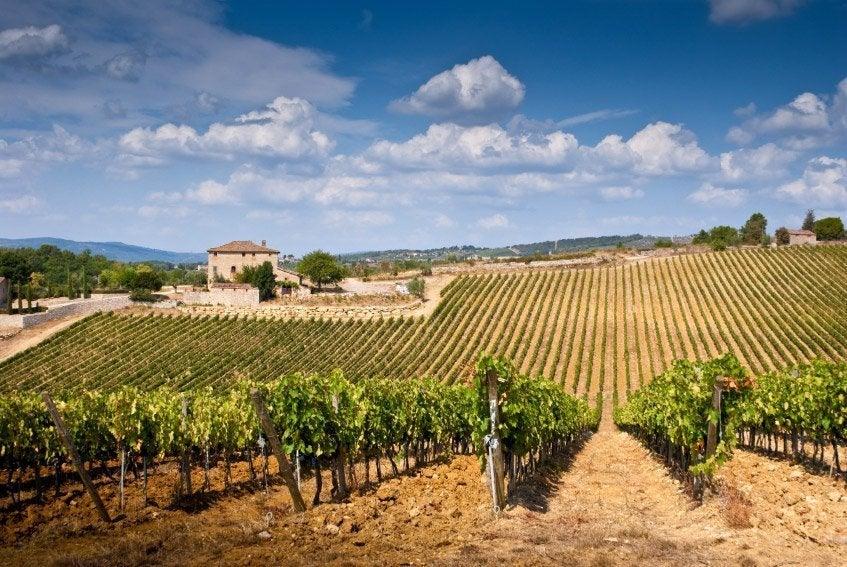 Paisaje típico de la Toscana