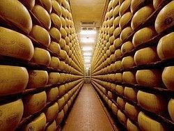 Fábrica de quesos