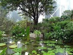 Jardín botánico del parque de Hong Kong