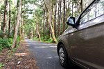 Alquiler de coches en Isla Mauricio