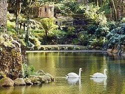 Recorriendo el Parque Natural de Sintra
