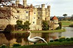 Leeds Castle, Canterbury and Dover Day Trip