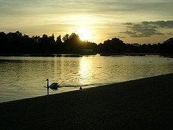 Coucher de soleil à Hyde Park