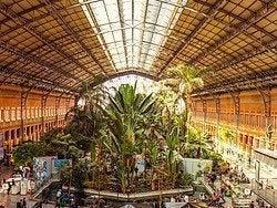 Atocha, Jardín Tropical