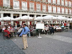 Plaza Mayor, acordeonista