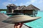 Civitatis en Maldivas, Gili Lankanfushi