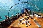 Restaurante submarino Ithaa, hotel Conrad