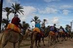 Oferta: paseo en camello + tour en quad