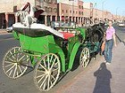 Horse-drawn carriage in Marrakech