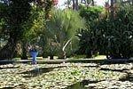 Jardines Majorelle