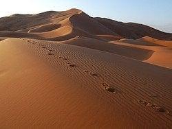 Desierto del Sahara, Erg Chebbi