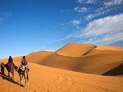 Excursion al desierto de Merzouga, camellos