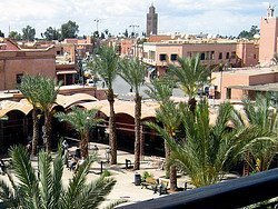 View of Marrakech from a terrace