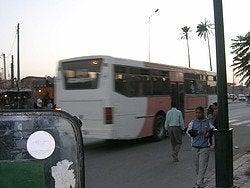 Transporte de Marrakech, autobús urbano