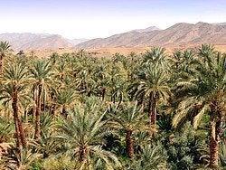 Valle del Draa, el inicio del desierto