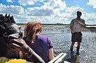 Everglades, comprobando la profundidad
