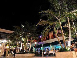 Coconut Grove, CocoWalk