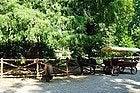 Jardins publics de Milan, poney