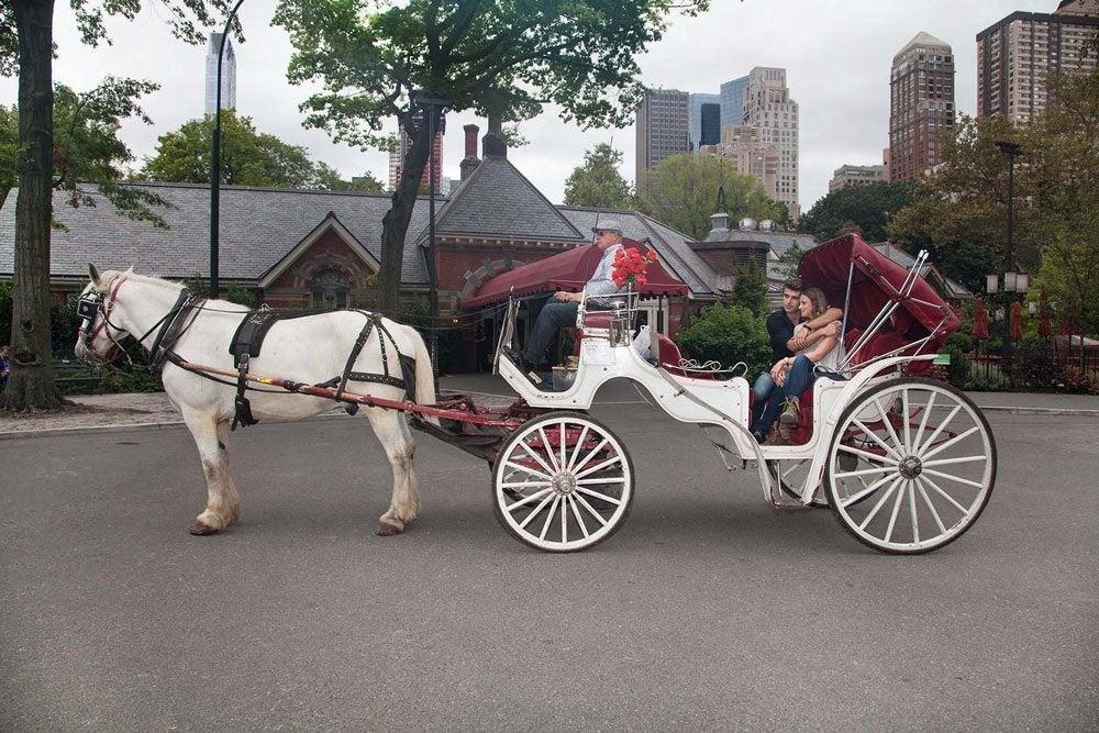 Paseo en calesa en Central Park