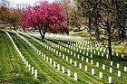 Washington, Cementerio de Arlington
